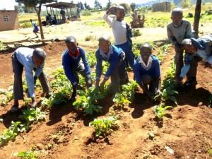 Kids gardening at St John (4)